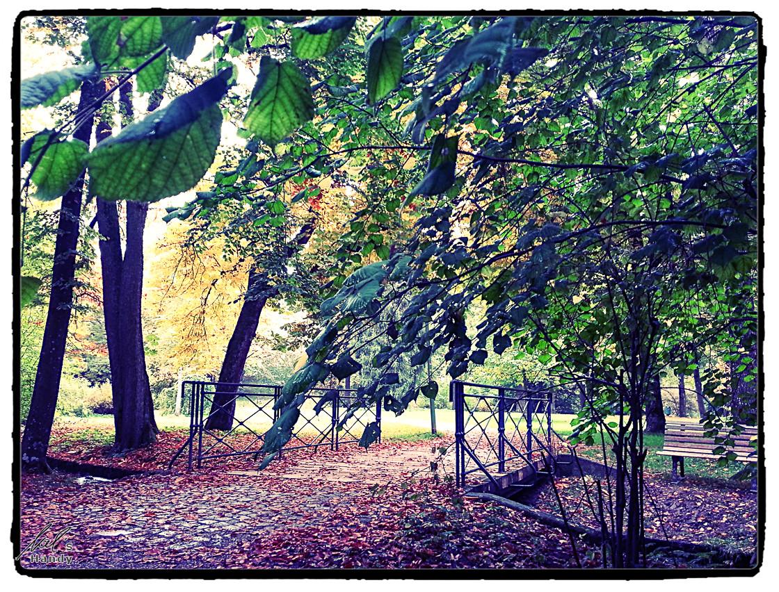 Park im Allgäu